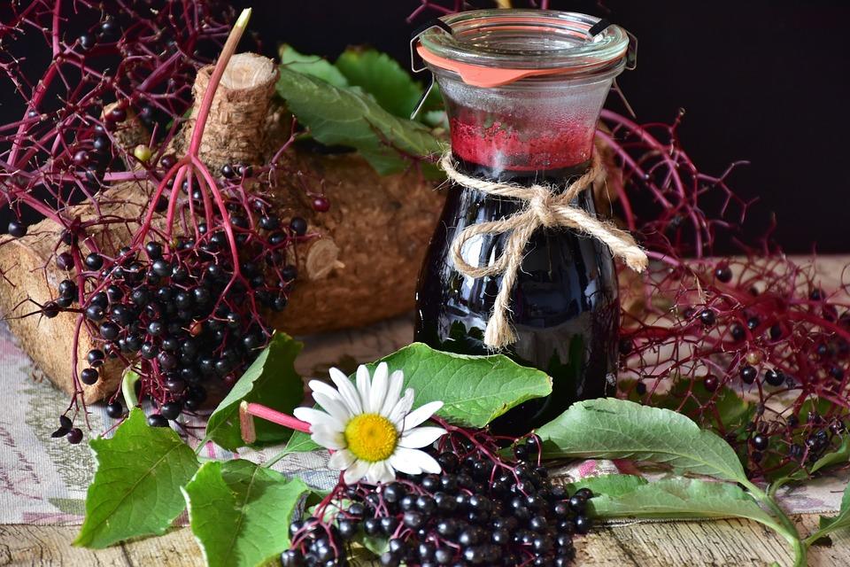 Сироп бузины принесет пользу для лечения ОРВИ
