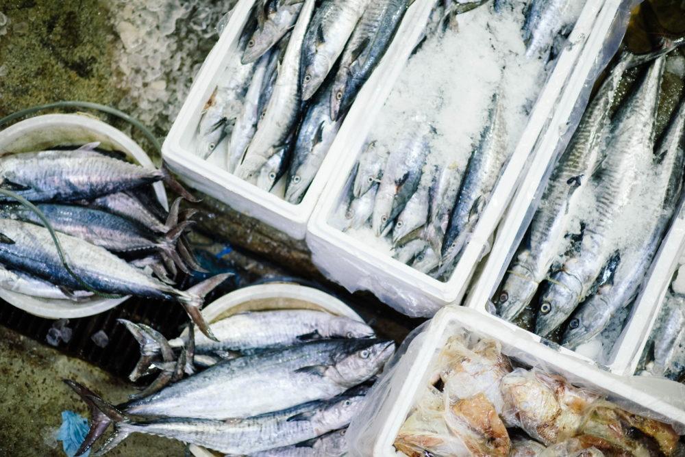 Жирные сорта рыба – полезные продукты питания для сердца