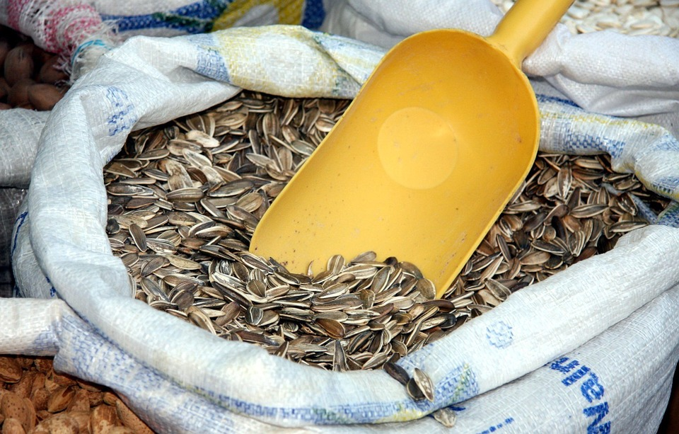 Подсолнечные семечки лучше всего покупать в магазинах здорового питания