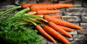полезные свойства моркови для организма