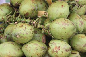 Польза зеленого кокоса